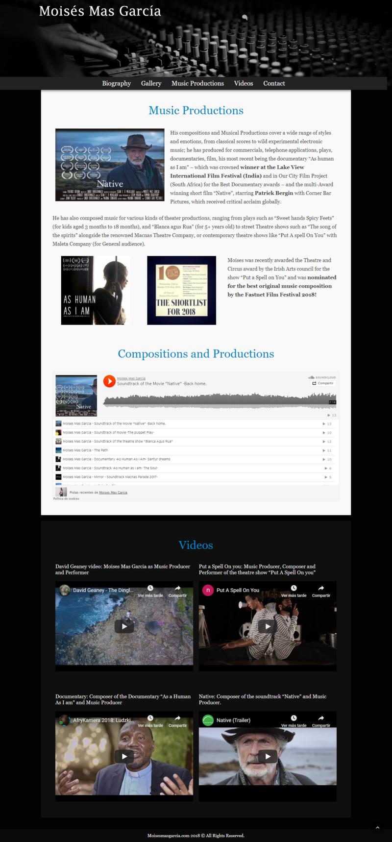 Página web músico irlandés